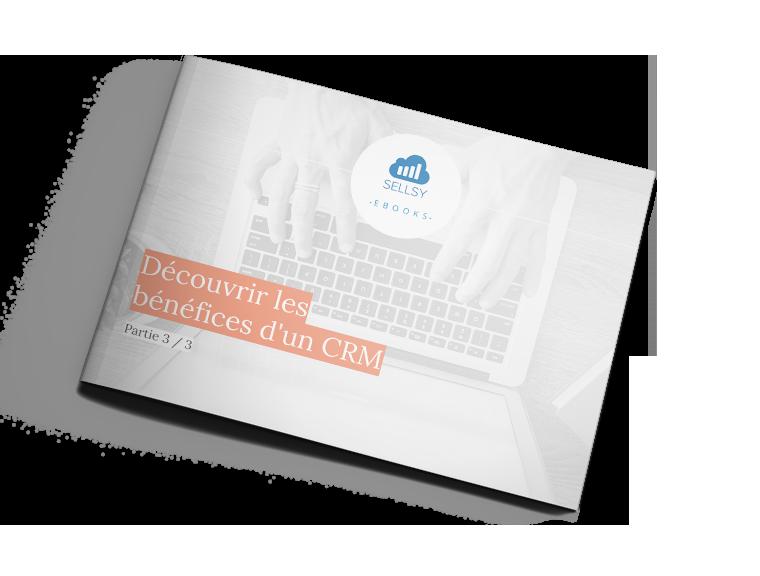 Ebook CRM 3